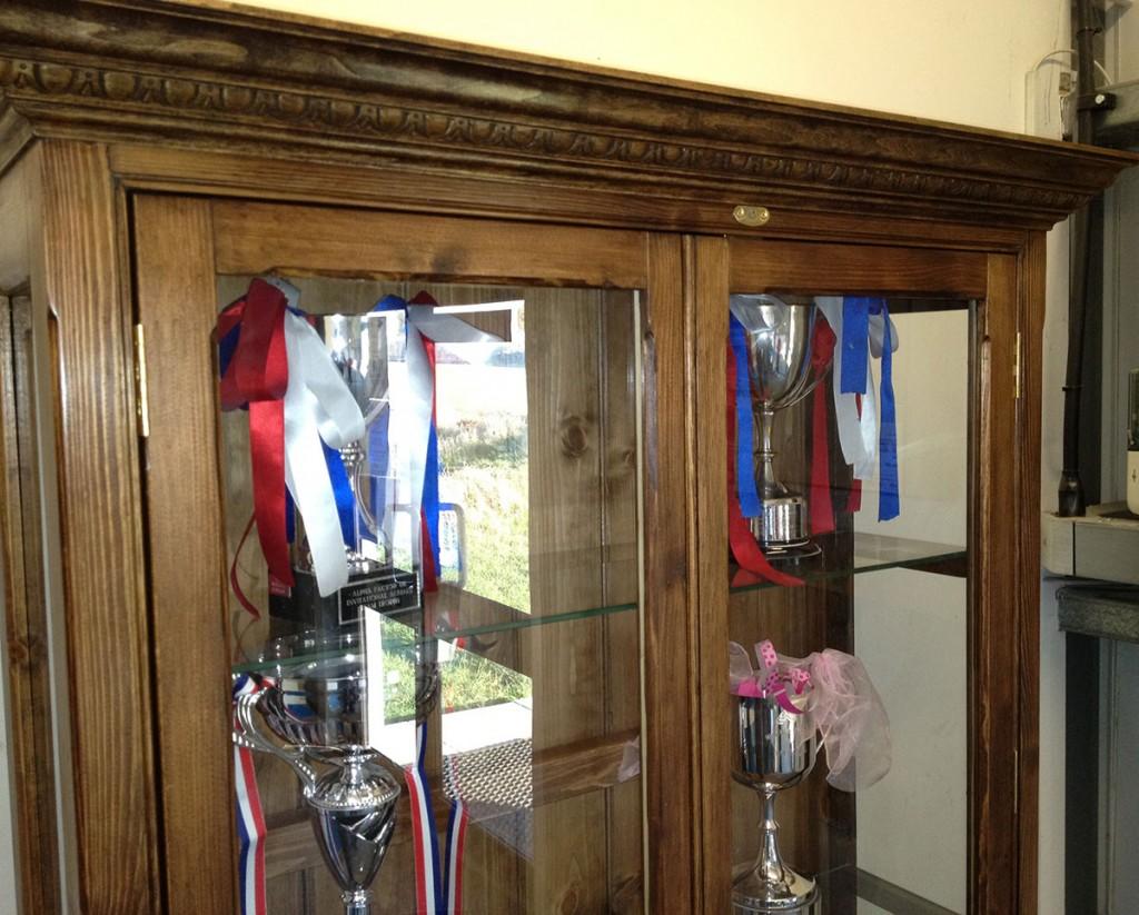 bespoke-wooden-trophy-cabinet-norwich